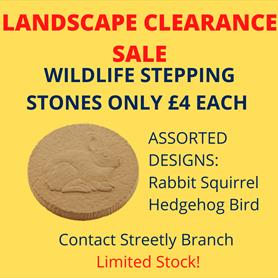 Streetly clearance wildlife steps